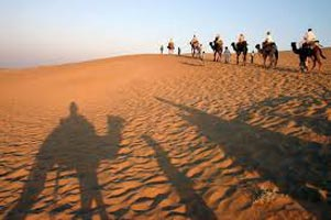 Camel Ride On Desert For Sunset