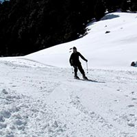 Ski in Auli