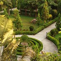 Jungle Safari Resort Garden