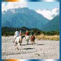 South Westland Horse Treks