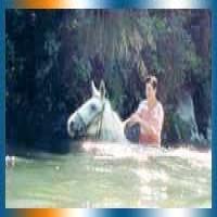 Western Ranges Horse Treks