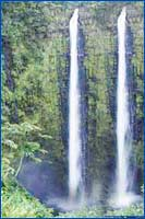 Akaka Falls State Park (Hilo) in Hawaii