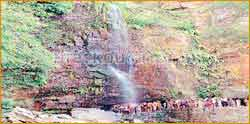 Akashaganga Waterfall in Tanuku