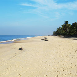 Alappuzha Beach in