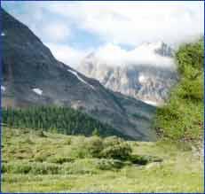 Almora Hills