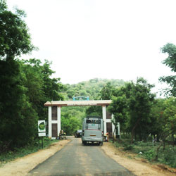 Anamalai Wildlife Sanctuary in