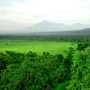 Bali National Park in Bali