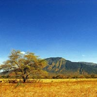 Baluran National Park in Java
