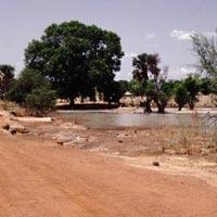 Bao Bolong Wetland Reserve in Baddibu
