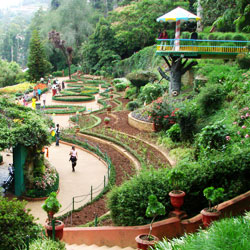 Botanical Garden in Ooty