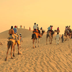 Camel Safari In Pushkar in Pushkar