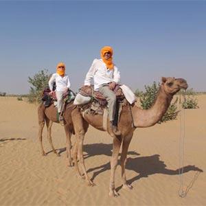 Camel Safari In Shekhawati