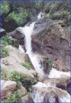 Chadwick Waterfalls
