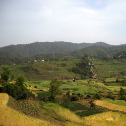 Champawat Hills in Kumaon