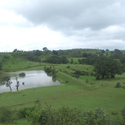 Chikhaldara Wildlife Sanctuary in Amarvati