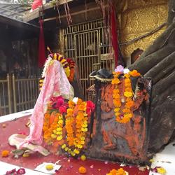 Chintpurni Devi Temple in Chintpurni