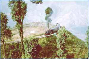 Darjeeling Hills in Darjeeling