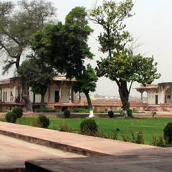 Dayalbagh Gardens in Agra