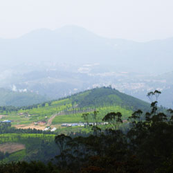 Doddabetta Peak in Ooty