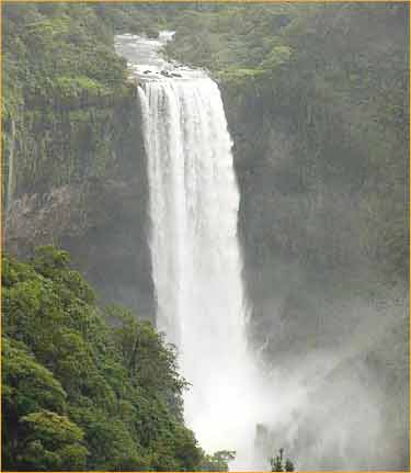 Dudhsagar Waterfalls in Goa City