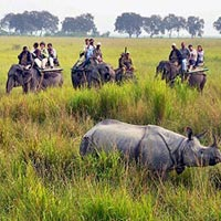 Kaziranga National Park in Golaghat