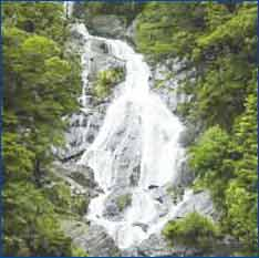 Fantail Falls in West Coast