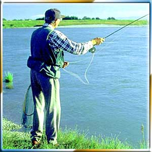 Fishing and Angling	 Tours