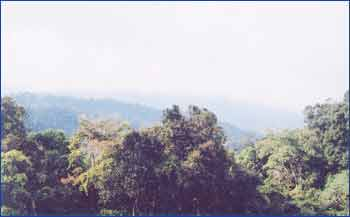 Frasers Hill in Pahang