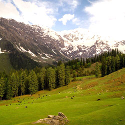 Himalayan National Park in Kullu