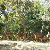 Hlawga National Park in Yangon
