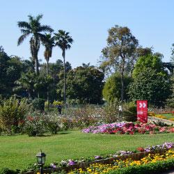 Horticultural Garden in Kolkata
