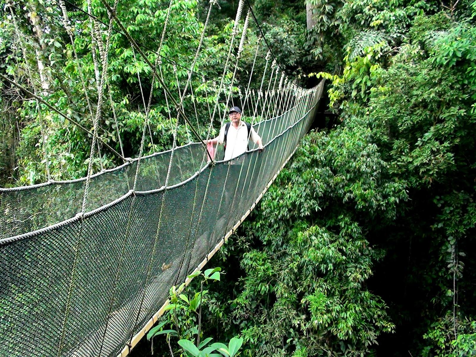 Kinabalu National Park in Sabah