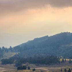 Kodaikanal Hills in Kodaikanal