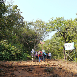 Koyna Wildlife Sanctuary in Satara