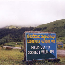 Kudremukh National Park in Chikmagalur