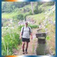 Madeira Trekking in Calheta