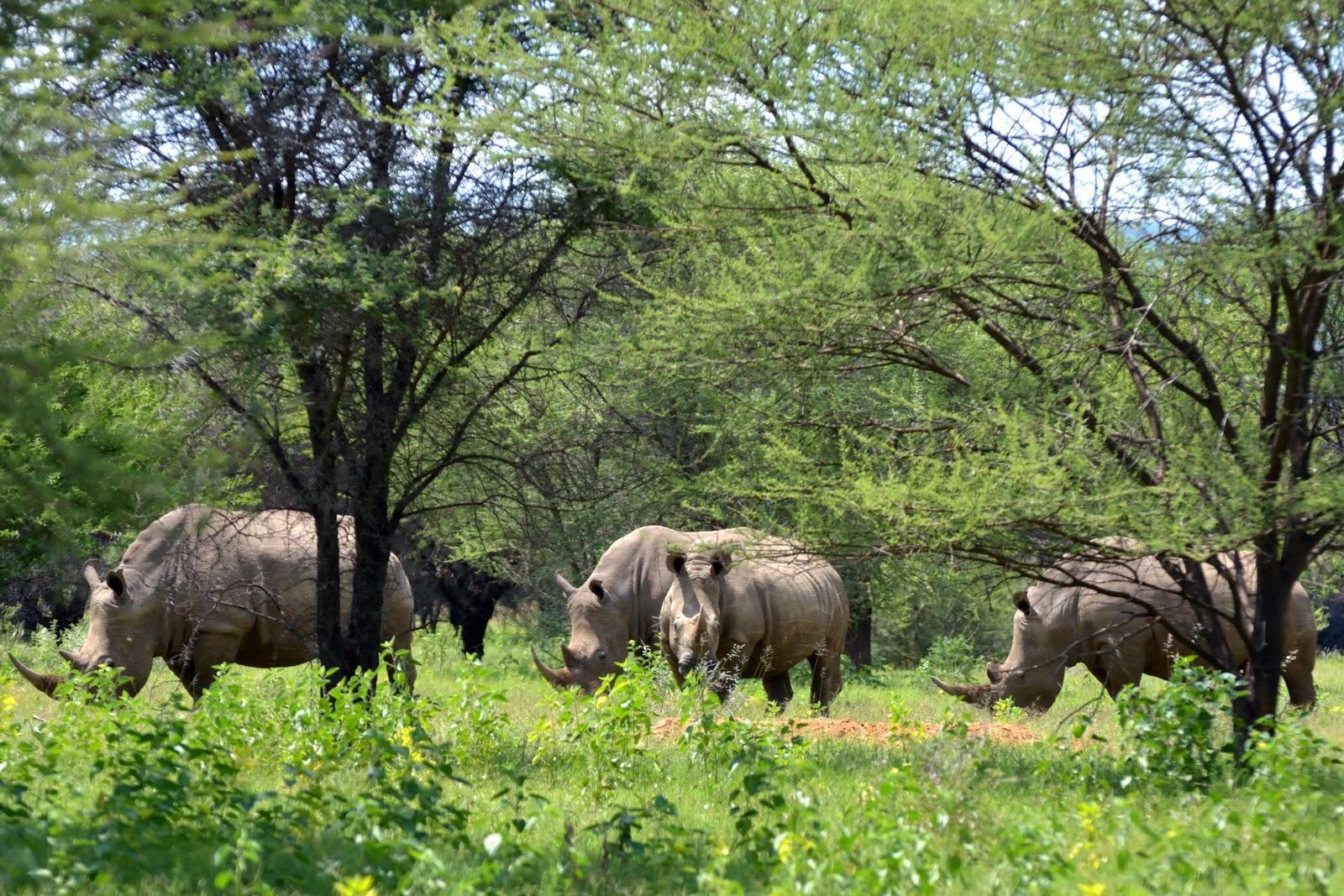 Marakele National Park