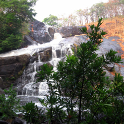 Meenmutty Waterfalls in Trivandrum