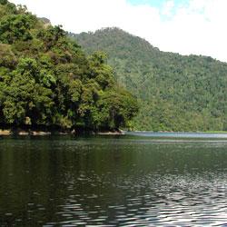 Mehao Wildlife Sanctuary in Dibang