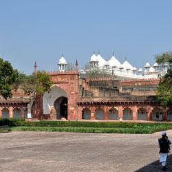 Moti Masjid in Agra