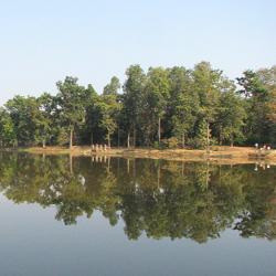 Navegaon National Park in Nagpur