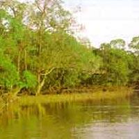 Nokrek Biosphere Reserve