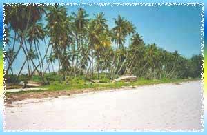 North Coast Beaches in Malindi