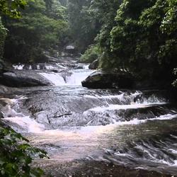 Palaruvi Waterfalls in Kollam