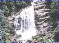 Power House Waterfalls in Idukki
