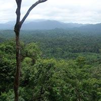 Rao Platano Biosphere Reserve in La Mosquitia