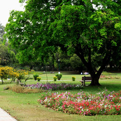 Shanti Kunj Garden in Chandigarh City