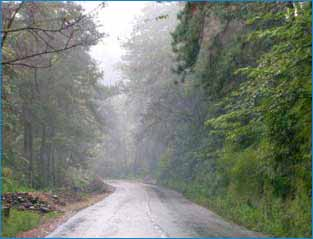 Shillong Hills