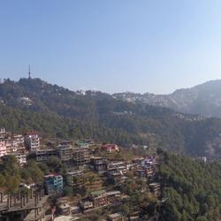 Shimla Hills in Shimla