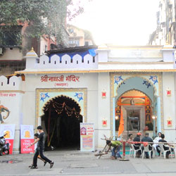Shrinathji Temple in Nathdwara